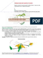 chapitre-2-reproduction-plantes-a-fleurs-a-completer-2022.odt