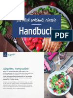 2012_Handbuch_classic.pdf