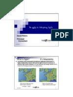 Adopting Agile Pragmatically 4Aug2010
