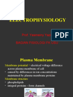 FL, K3-4, Biolistrik.ppt