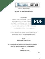 T.Colaborativo Costos y Presupuestos
