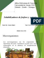 SOLUBILIZADORES DE K y P