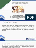 Modelo Belbin.pdf