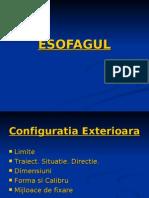ESOFAGUL 0