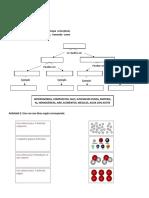 actividad clasificación de la materia