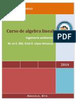 ALG LIN GBO.pdf