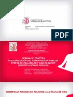 SEMANA 12 PRACTICA APLICACION DE LA FICHA FAMILIAR ETAPA VIDA ADULTO Y ADULTO MAYOR- AIIS 2020-I.pdf