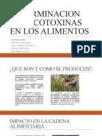 DETERMINACION DE MICOTOXINAS EN LOS ALIMENTOS
