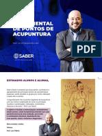 EBOOK MAPA MENTAL DE PONTOS DE ACUPUNTURA