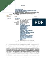 P10-T377-T-resumen.docx