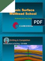 Basic Wellhead School 01