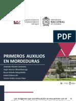 PRIMEROS_AUXILIOS_EN MORDEDURAS.pptx