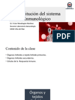 organos del sistema inmune