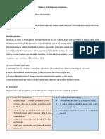 Design Thinking - etapa 5 (prototipare)