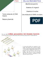 4-CELLULA PROCARIOTICA .pdf