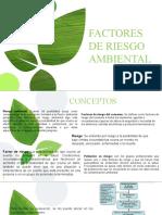 FACTORES DE RIESGO AMBIENTAL MAYO 4