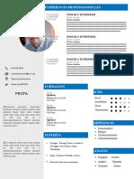 108-curriculum-vitae-ingenieur.docx