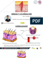 HERIDA Y CICATRIZACION.pdf