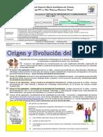 TALLER EVOLUCIÓN DEL SER HUMANO REAL 6 2T 2020. DANNA.pdf