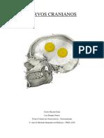 Nervos Cranianos - neuroanatomia