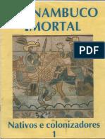 382038030-213876753-JC-1995-Pernamcuco-Imortal-01.pdf