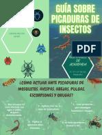 GUÍA SOBRE PICADURAS DE INSECTOS(1)_compressed(1)