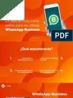 Guia Avanzada Para Whatsapp Business