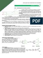 14 - Lipólise.pdf