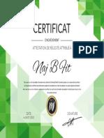 NajBFit.pdf