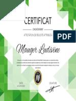 MAUGERLudivine.pdf