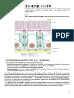 Biología molecular - resumen del Alberts.