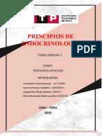 PRINCIPIOS DE ENDOCRINOLOGÍA.docx