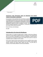 PROTOCOLO PARA ACTIVAR LAS AREAS DE BRODMAN MARIANA DEL HOYO.pdf