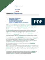 características e importancia  monografias administracion.docx