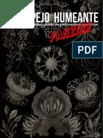 04-5 ESPEJO-HUMEANTE fanzine-2019