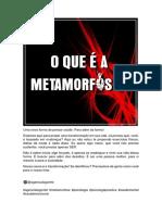 Planejamento metamorfose (1).pdf