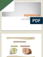 Minerais_d3fb365f7761794ff0bf55f2f3eac54b.pdf