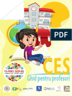 CES Ghid Pentru Profesori BT