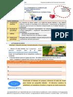 MATERIAL INFORMATIVO - GUÍA PRÁCTICA S12 - 2020 II (1)