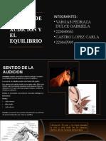 SENTIDOS DE LA AUDICIÓN Y EL EQUILIBRIO
