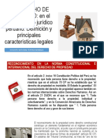 DEL DERECHO DE PROPIEDAD