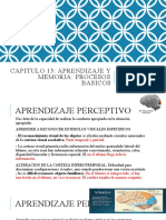 2nda parte Cap. 13 Aprendizaje y Memoria