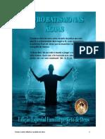 Livro Batismo Nas Águas