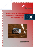 bussiness_plan_2008