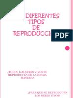 Diferentes Tipos de Reproduccion