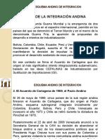 TEMA 11_ESQUEMA ANDINO DE INTEGRACION