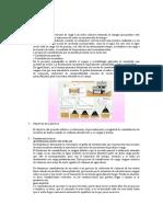 PRIMER INFORME DE LABORATORIO SUELOS II