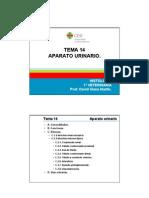 Aparato Urinario- patología (letras)