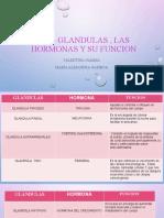 ALEJANDRA LAS HORMONAS