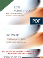 TALLER DE APLICACIÓN 1_G13.pptx